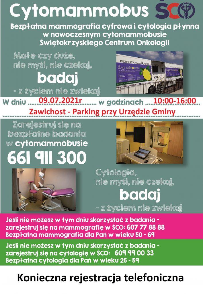 Plakat Zawichost